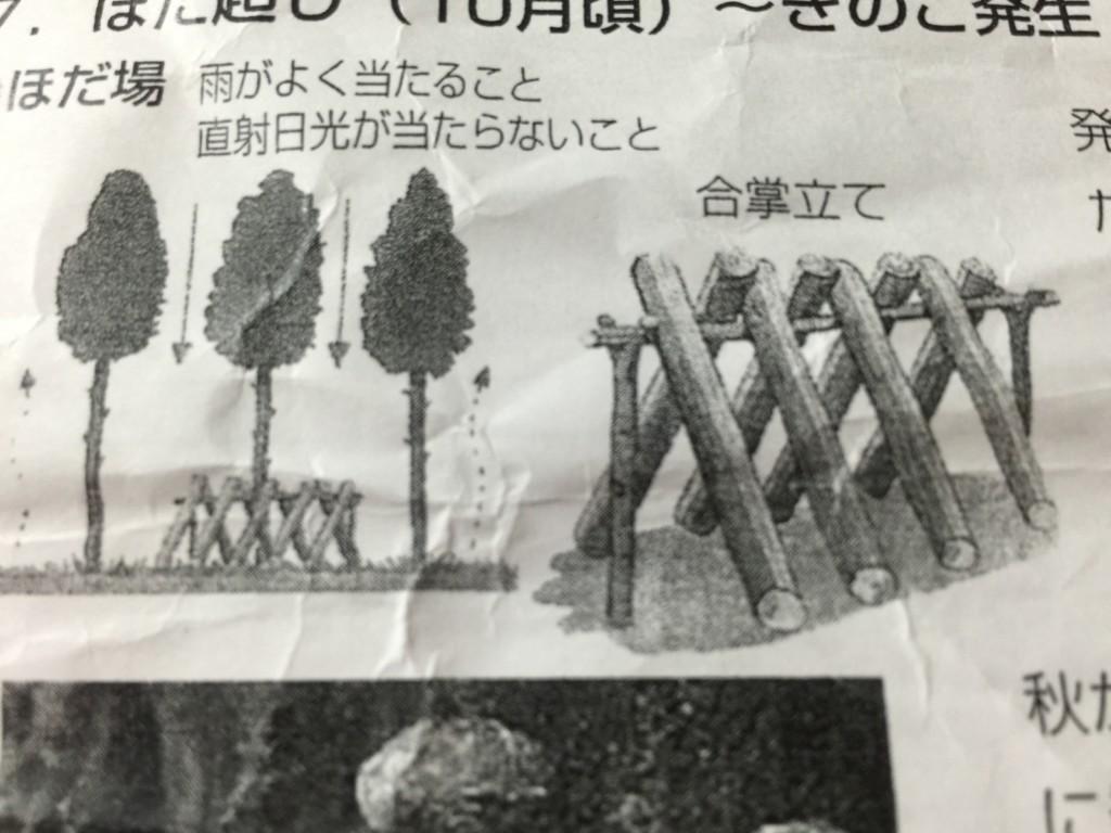 所 しいたけ 原木 置き場