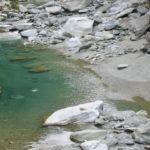 加茂川のキレイな水質