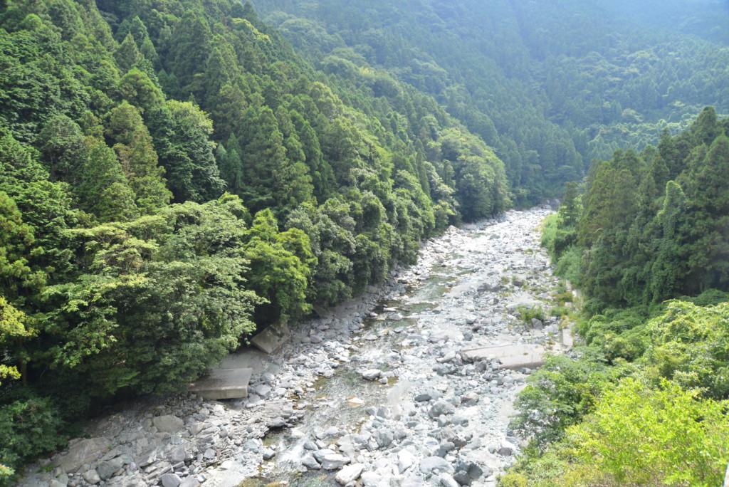 加茂川 荒川地区