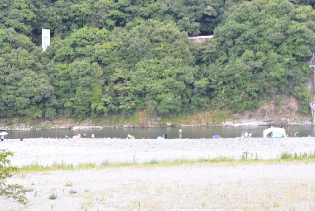 加茂川川遊び