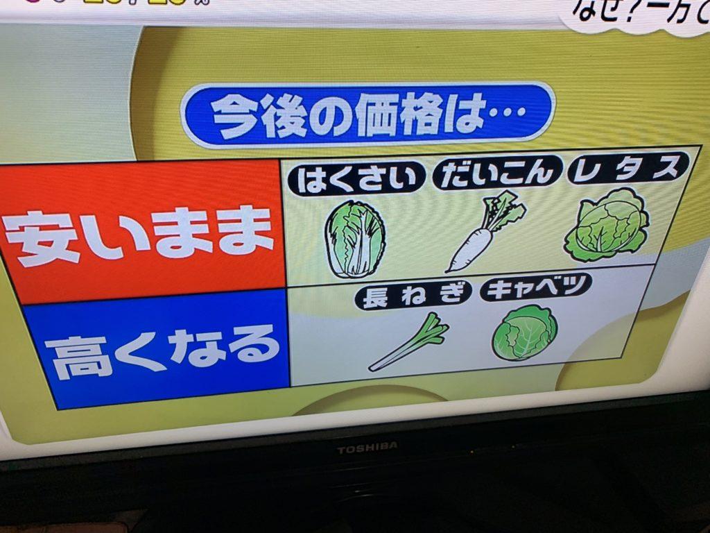 2019年野菜価格