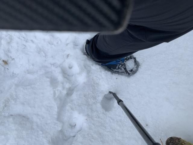 山登り 足がつる