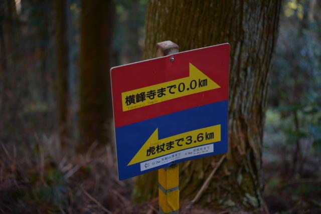 横峰寺境内にある星が森への道のり