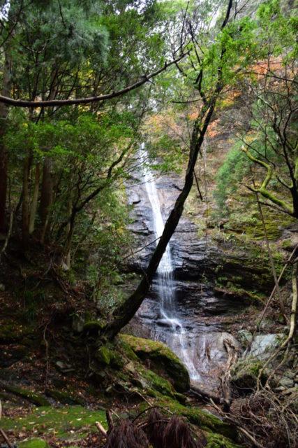 西条市東之川 おたるの滝
